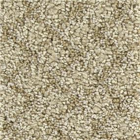 Coastal Sand